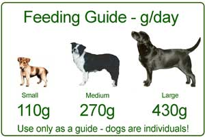 Feeding Guide adult food